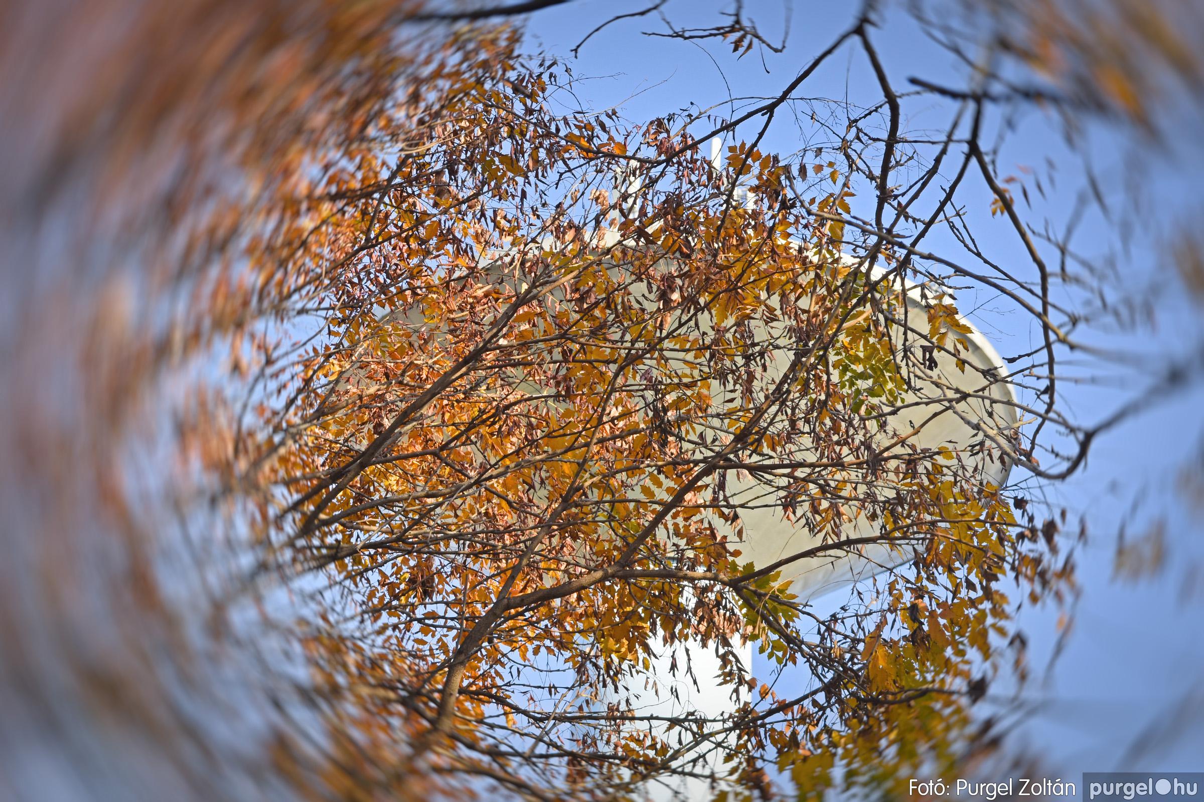 035 2020.11.08. Szegváron járt az ősz - Fotó: Purgel Zoltán© _DSC3321q.jpg