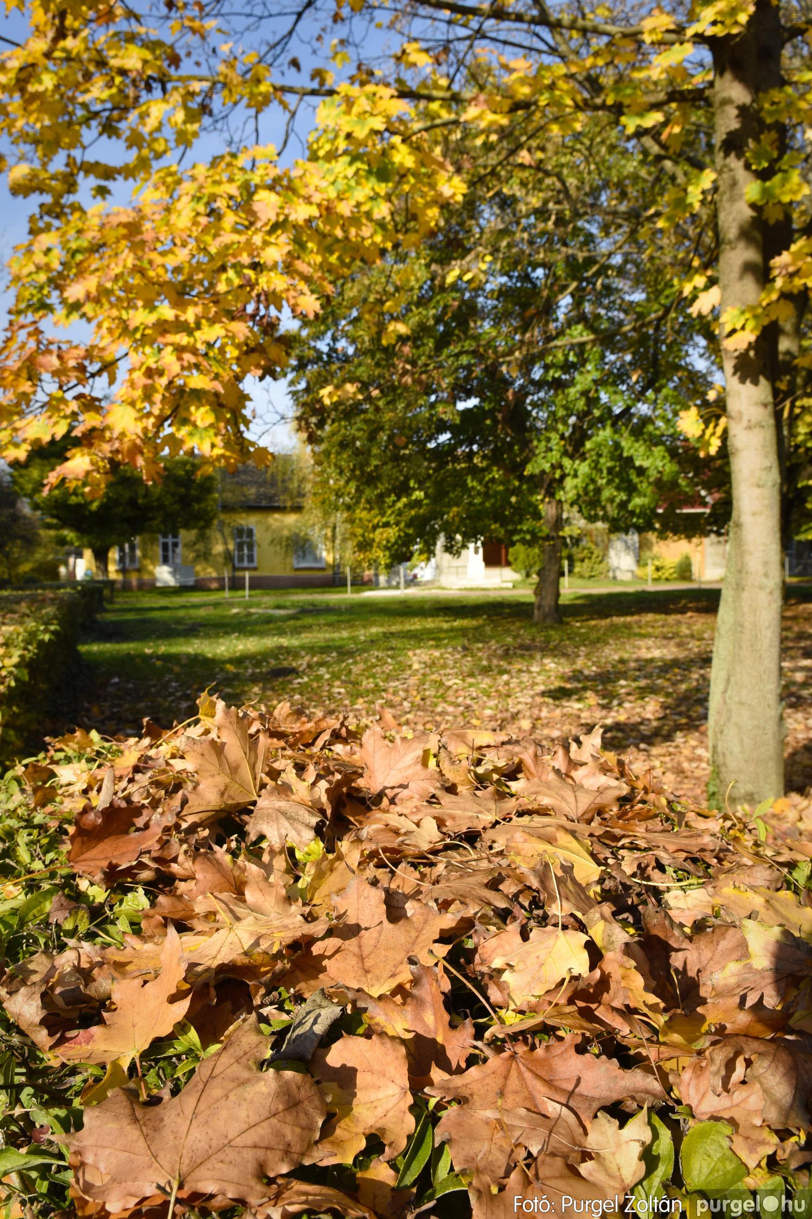 011 2020.11.08. Szegváron járt az ősz - Fotó: Purgel Zoltán© _DSC3266q.jpg