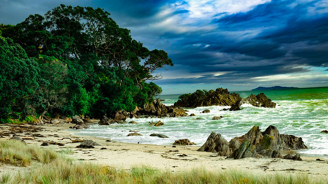 Tauranga NZ