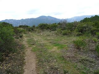 Remontée de la piste annexe Sud de Bocca di Sadica