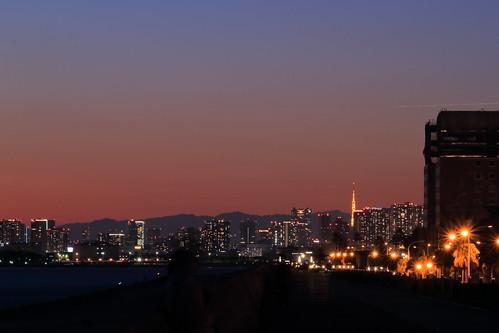 tokyo cityscape sunset urayasu maihama chiba japan tokyotower