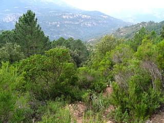 Descente PR5 depuis Fugulina : état du sentier