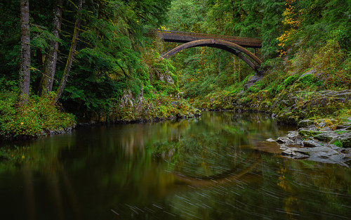 autumn bridge fall falls footbridge green landscape landscapephotography lewisriver lush moultonfallsbridge outdoor outdoorwashington outdoors pacificnorthwest pnw rain reflection rocks serene tranquil trees washington yacolt yacoltwashington unitedstates