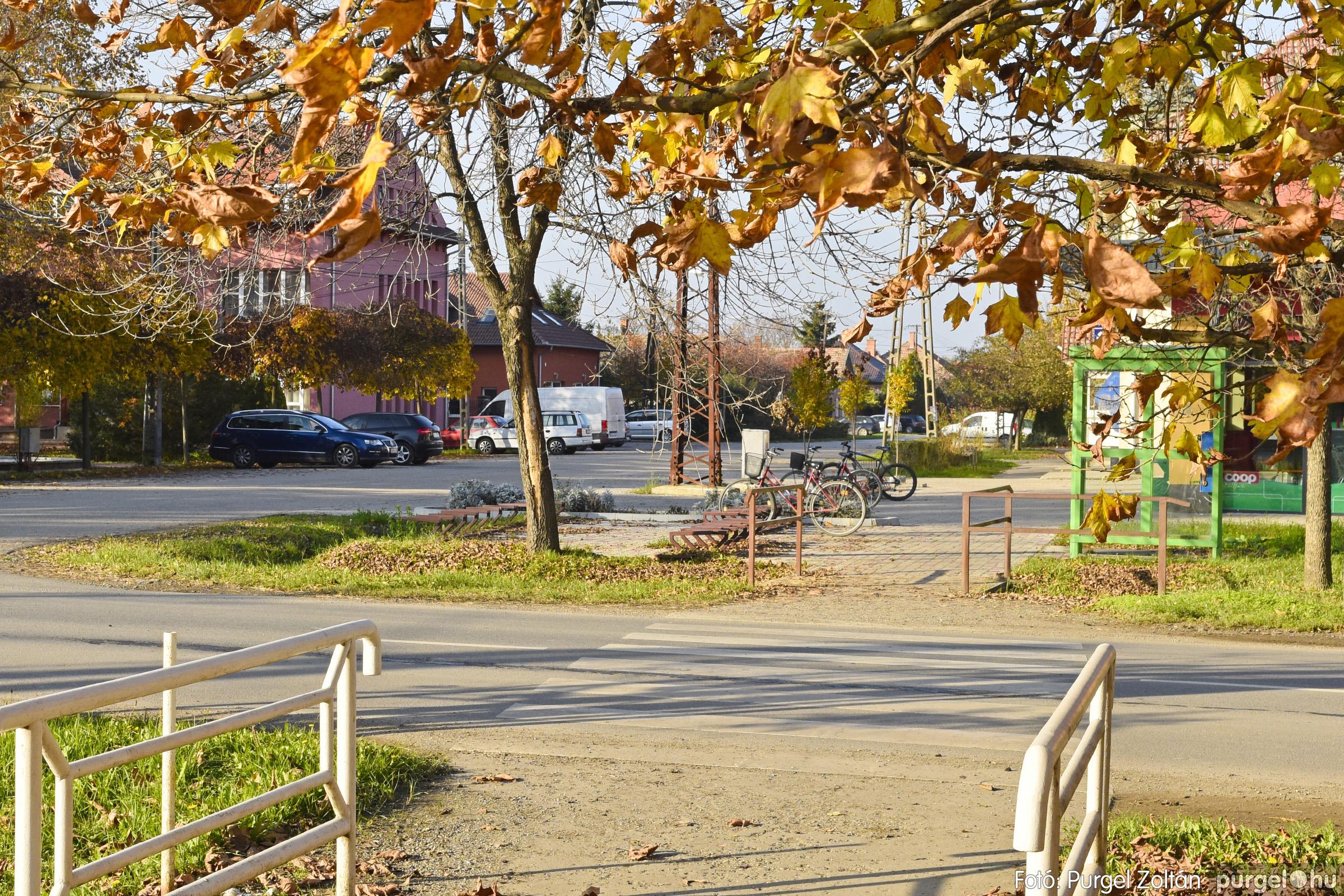 041 2020.11.08. Szegváron járt az ősz - Fotó: Purgel Zoltán© _DSC3334q.jpg
