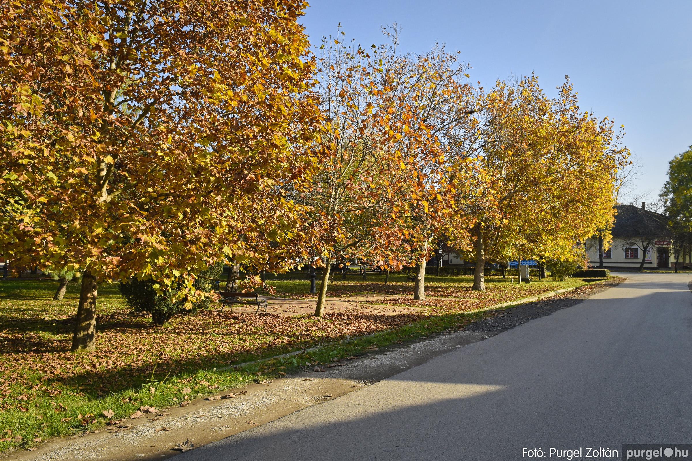 033 2020.11.08. Szegváron járt az ősz - Fotó: Purgel Zoltán© _DSC3317q.jpg
