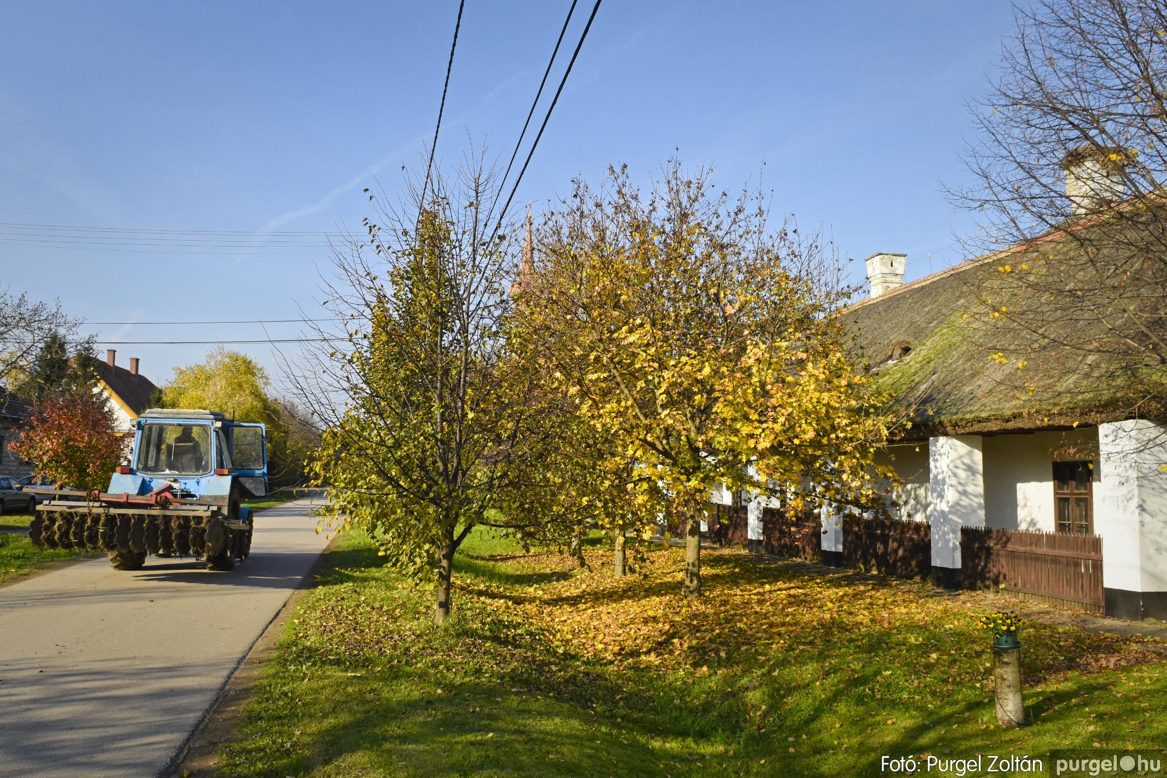 030 2020.11.08. Szegváron járt az ősz - Fotó: Purgel Zoltán© _DSC3310q.jpg