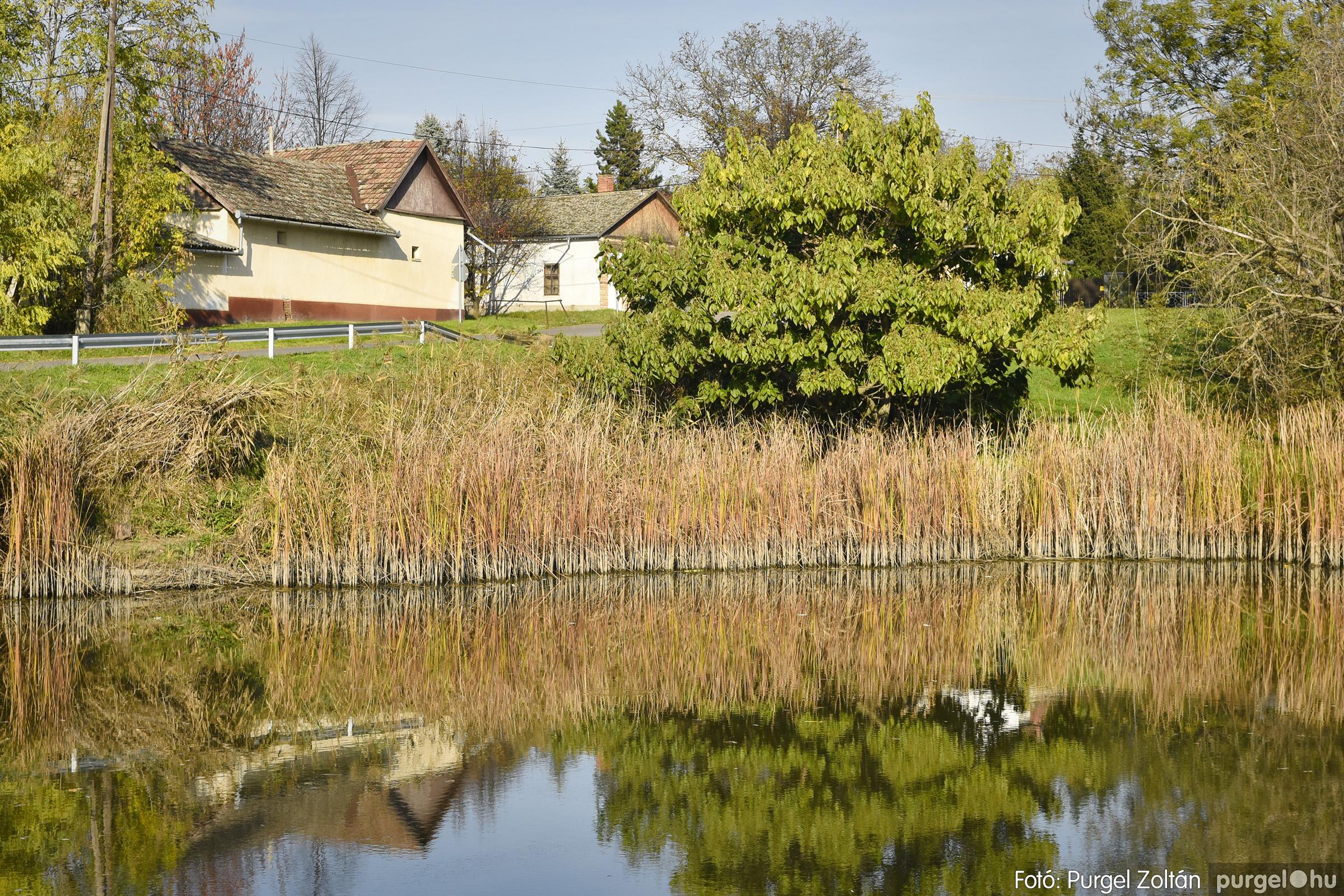 026 2020.11.08. Szegváron járt az ősz - Fotó: Purgel Zoltán© _DSC3294q.jpg