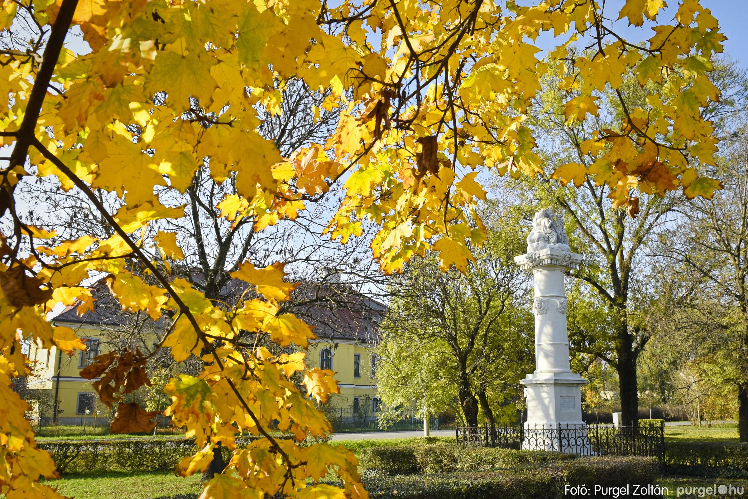 013 2020.11.08. Szegváron járt az ősz - Fotó: Purgel Zoltán© _DSC3269q.jpg