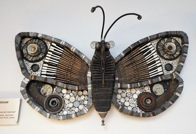 CoSI Butterflies