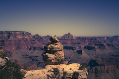 Grand Canyon 7313