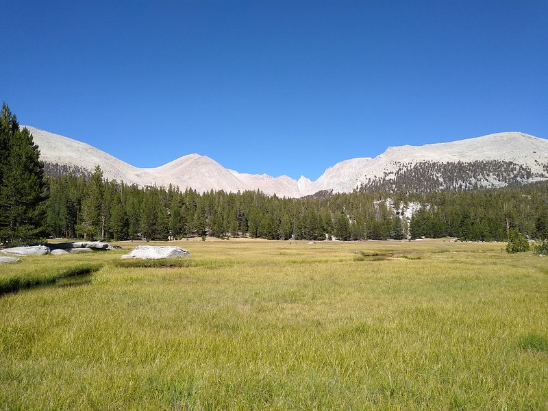 Looking east over Crabtree Meadow toward Mount Hale, Mount Morgenson, Mount Russell, and Mount Whitney