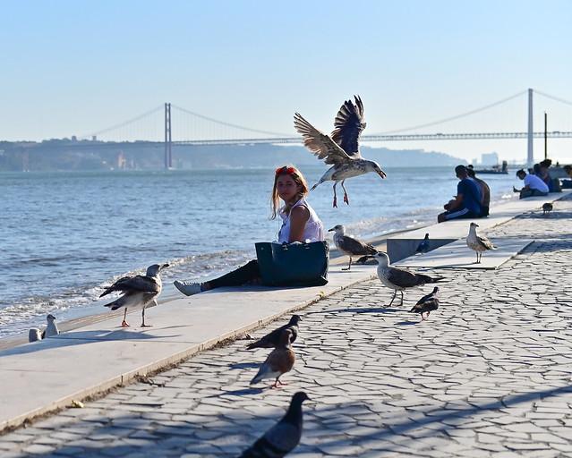 Ribera de las Naos en Lisboa