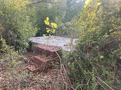 Mitchell Lane Area Ruins 1