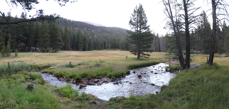 Rock Creek flowing through a meadow next to our campsite on the PCT