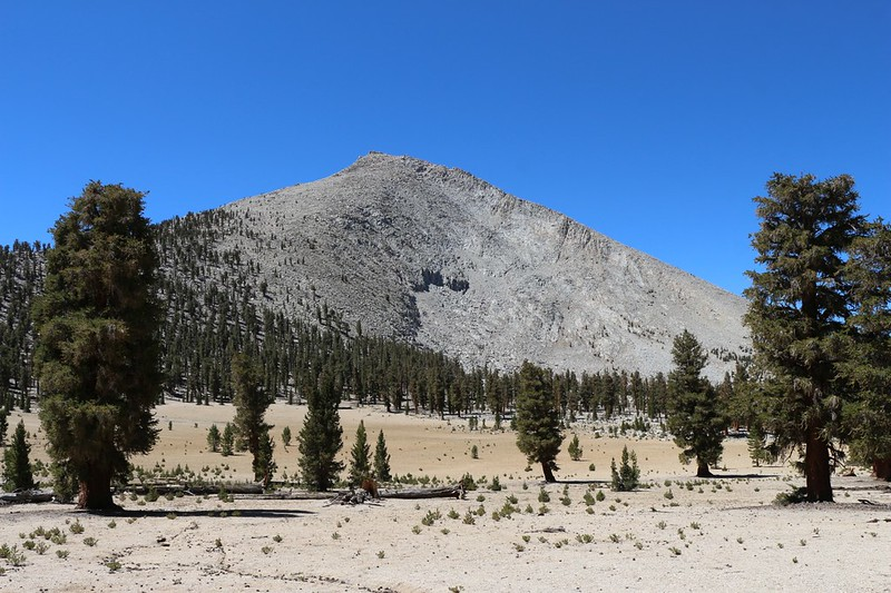 Mount Guyot from Guyot Flat on the Pacific Crest Trail