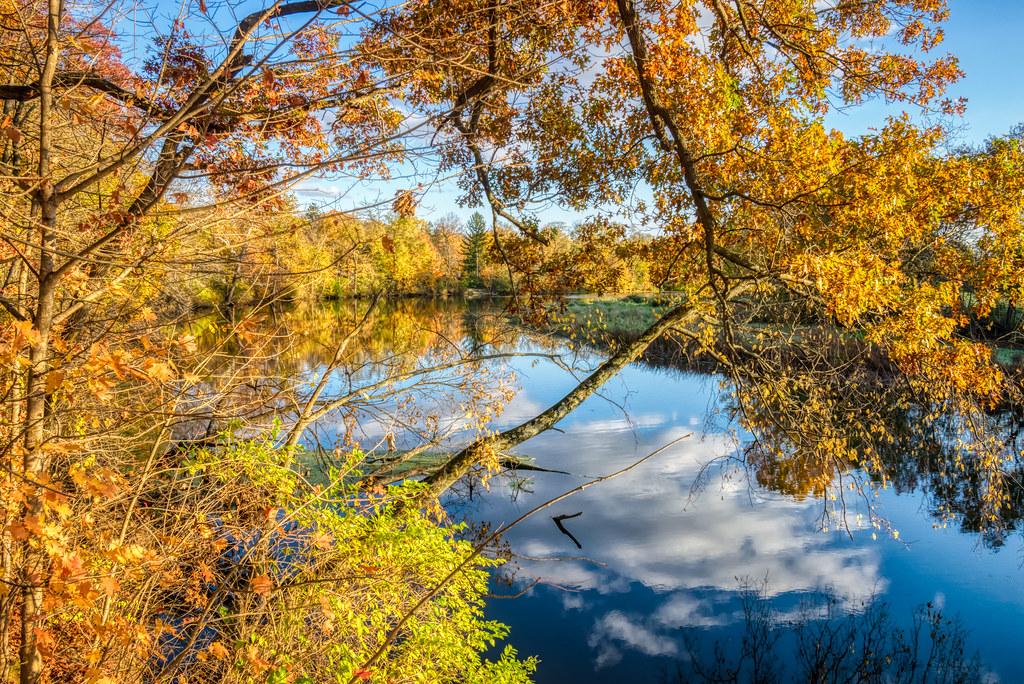 Autumn in Indiana (1)