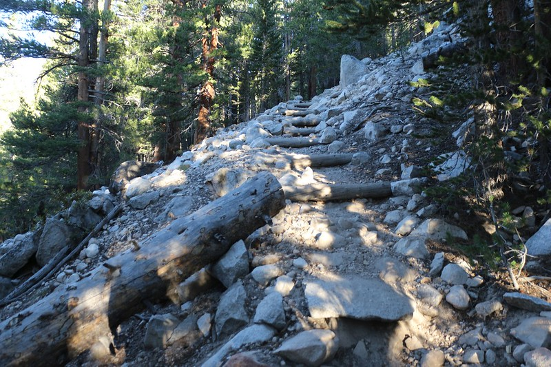 Wooden logs used as steps on the switchbacks north of Rock Creek on the Pacific Crest Trail