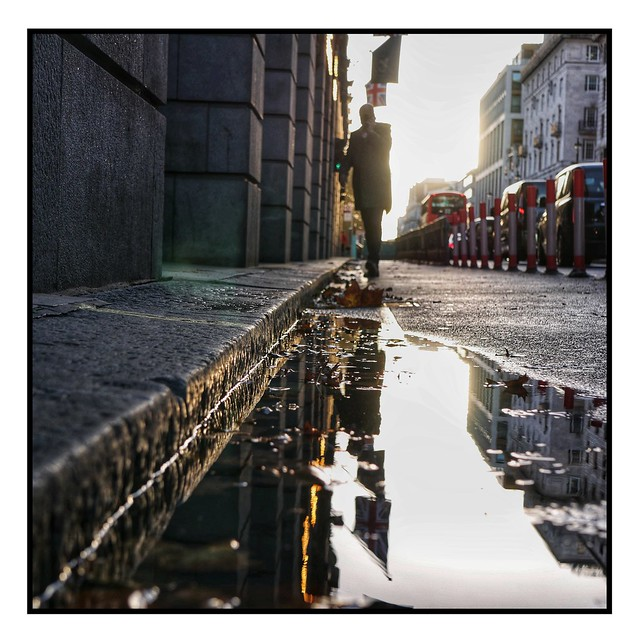 Puddle pic