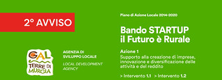 Bando_Start_UP_2020