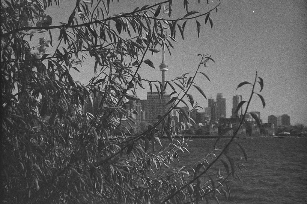 Toronto in Film