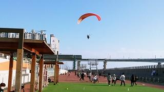 Paragliding auf Yeongdo