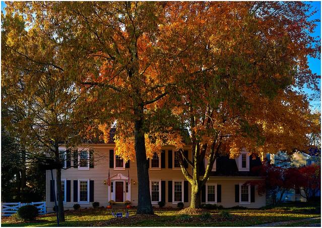 November Morning  In Our Neighborhood