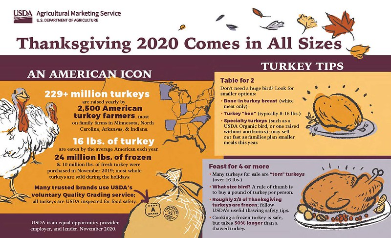 Thanksgiving 2020 Comes in All Sizes infographic