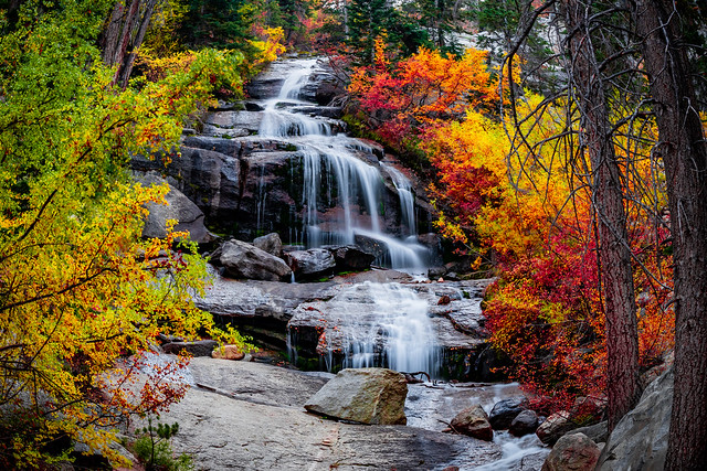 Waterfall of Colours