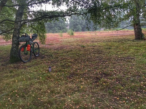 Thursley, night one's camp spot, leave no trace