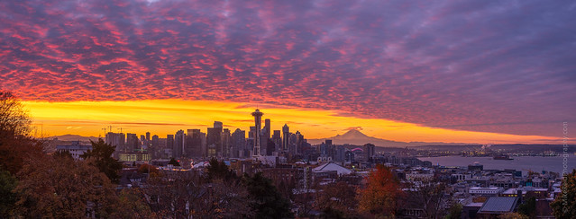 Seattle Sunrise GFX50s