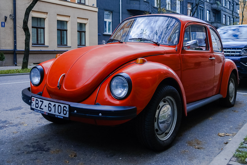 Great beetle !! 15:49:27 DSC_8954