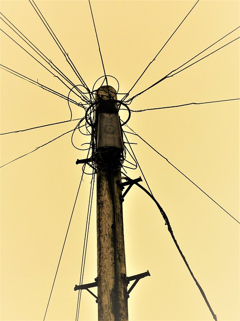 Telegraph Pole and Telephone Lines