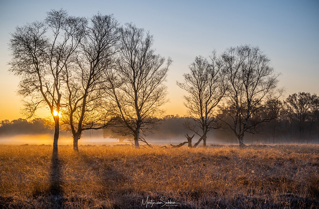 Sunrise in Westerwolde