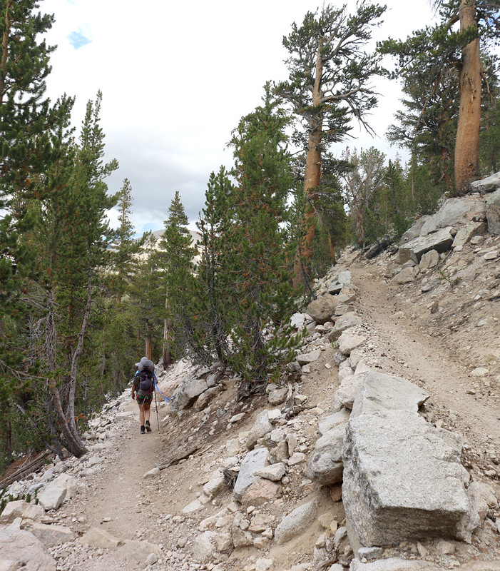 Switchbacks on the way down to Wallace Creek on the PCT-JMT-HST
