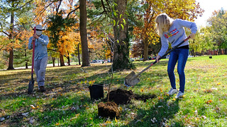 Eye on UMSL: Arbor Day celebration: November 9, 2020