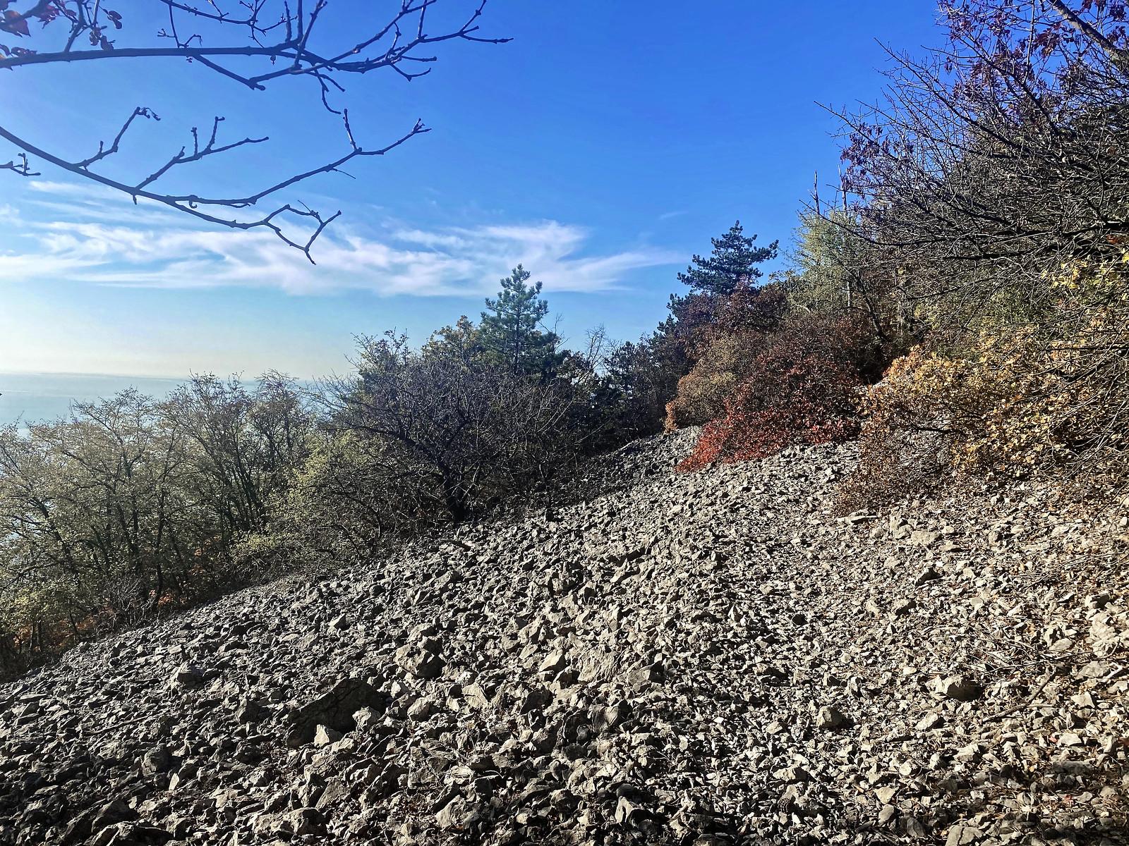 Prosecco Trieste, La Corsa della Bora, Sommaco
