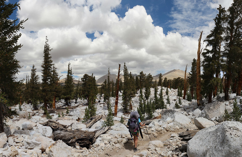 Mounts Tyndall, Versteeg, Williamson, and Barnard in the distance to the northwest as we hike on the PCT-JMT-HST