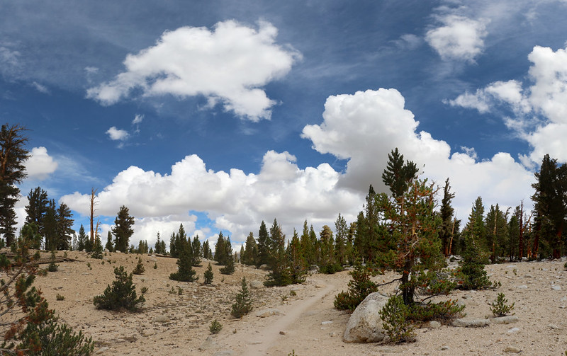 Hiking across the plateau between Whitney and Wallace Creeks on the PCT-JMT-HST