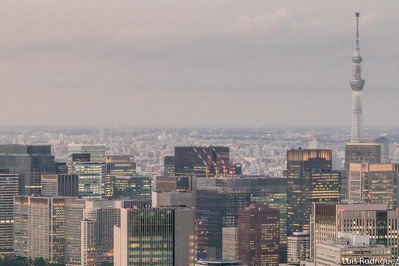 Torre Tokyo Skytree, a lo lejos