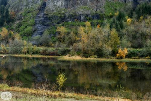 autumn fall columbiagorge columbiarivergorge mirrorlake swans cliff oregon pacificnorthwest garyquay garylquay nikon ortoneffect foliage fallfoliage autumnleaves water lake reflection reflectiononwater color landscape