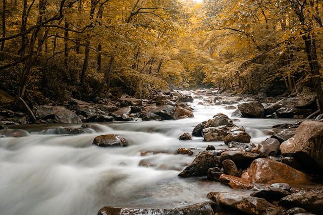 Smoky Mountain Fall Magic
