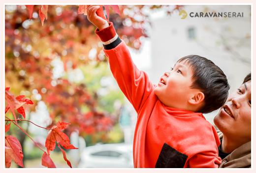紅葉真っただ中の秋の公園でファミリーフォトのロケーション撮影