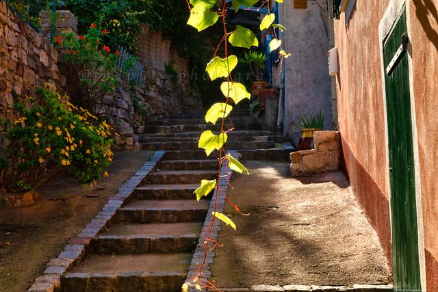 Cuers l'un des plus vieux villages du Var. -3D0A7689