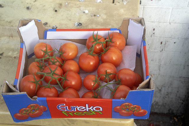 DSC_7527 €ureka Fresh Belgian Vine Ripe Tomatoes from  Dalston Ridley Road Turkish TFC Supermarket at £9.29 for a box of 36