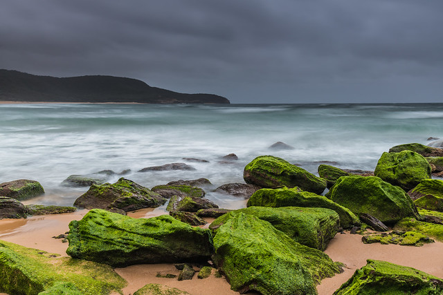 Moody Sunrise at the Seaside with Green Mossy Rocks