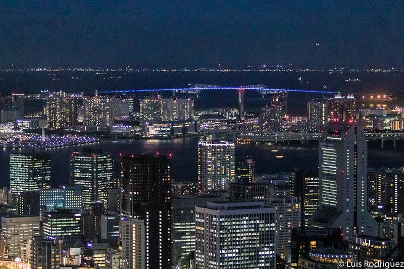 Vistas de la bahía de Tokio con el puente Tokyo Gate al fondo