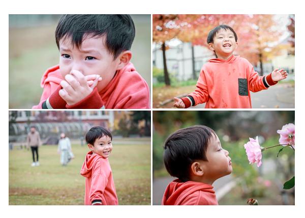 公園でロケーション撮影 紅葉 バラの花