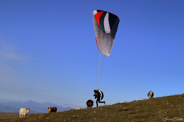 Paragliding with spectators
