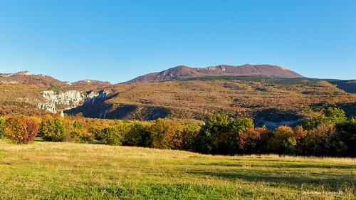 vranja lupoglav istra croatia landscape krajolik šuma forest zelenilo greenery bojejeseni autumncolors trava grass nebo sky flickrunitedaward