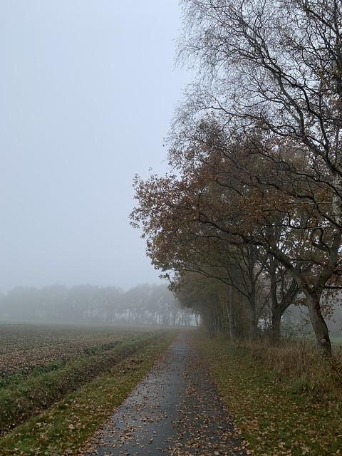 Misty 34km lunchride